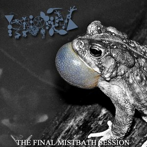 Image for 'The Final Mistbath Session'