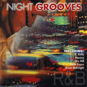 Image pour 'night grooves'