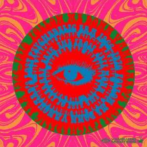 Image for 'Follow Me Down: Vanguard's Lost Psychedelic Era (1966 - 1970)'