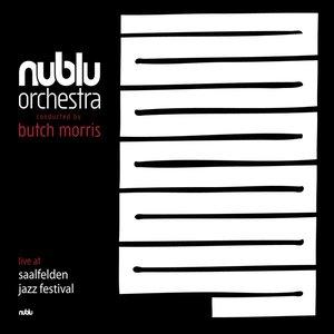 Image for 'Live at Jazz Festival Saalfelden'