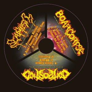 Image for 'CD Split 2010'