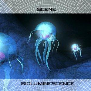 Image pour 'Bioluminescence'