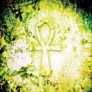 Image for 'Seth Drums (Original Mix)'