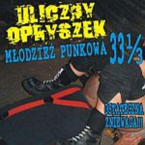 Image for 'Młodzież Punkowa 33 i 1/3'