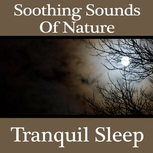 Imagem de 'Soothing Sounds Of Nature - Tranquil Sleep'
