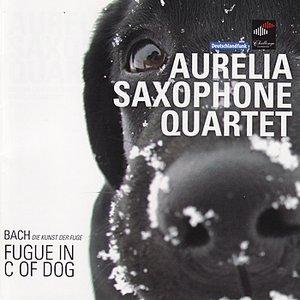 Imagem de 'Fugue In C Of Dog'