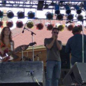 Imagen de 'The Cowboy Hillbilly Hippy Folk Band'