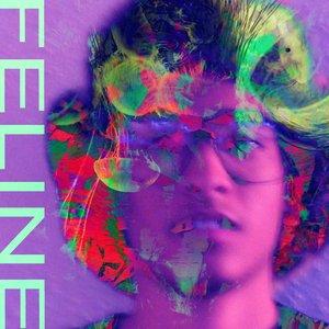 Image for 'FELINE'