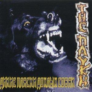 Image for 'Дикие пляски дохлых собак'