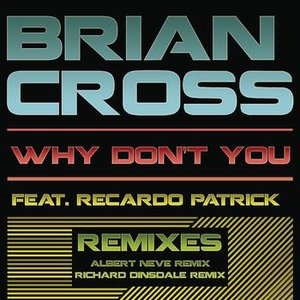 Image pour 'Why Don't You (Remixes)'