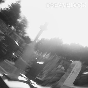 Image for 'DREAMBLOOD'