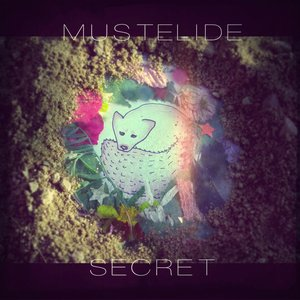 Image for 'Secret'