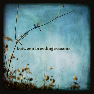Image pour 'Between Breeding Seasons'