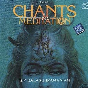 Image for 'Chants for Meditation'