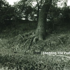 Image for 'Shedding the Past'