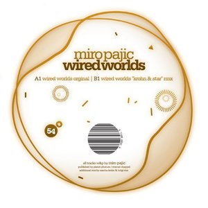 Image for 'wired worlds'
