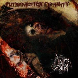 Image for 'Putrefaction Eternity'
