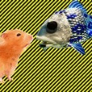 Bild för 'Fish Hamster and Your Old'