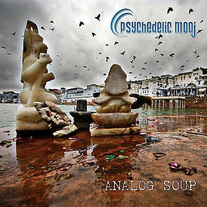 Image pour 'Analog Soup'