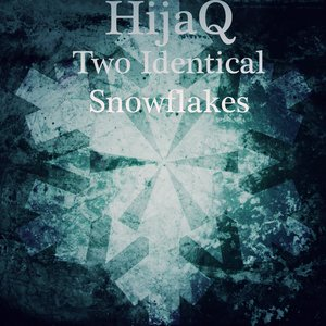 Image for 'Two Identical Snowflakes'