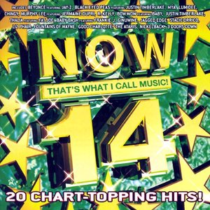 Image for 'Now That's What I Call Music! 14'