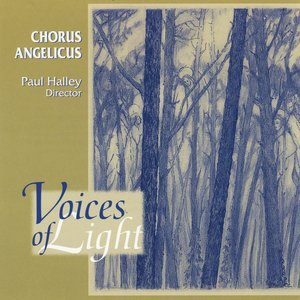 Image for 'Voices Of Light'