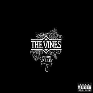 Image for 'Vision Valley (Bonus Track Version)'