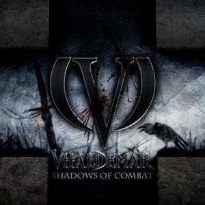 Image pour 'Shadows of Combat'