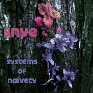 Image pour 'Systems of Naivety EP'