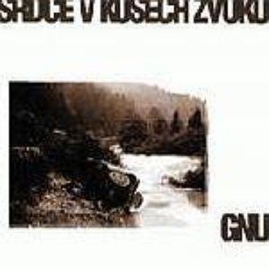 Image for 'Srdce v kusech zvuku'