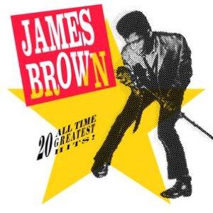 Bild för '20 All Time Greatest Hits'