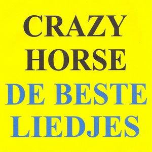 Image for 'De beste liedjes'