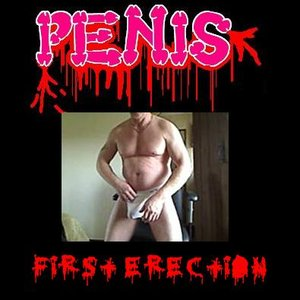 Image for 'First Erection'