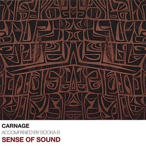 Image pour 'Sense Of Sound'