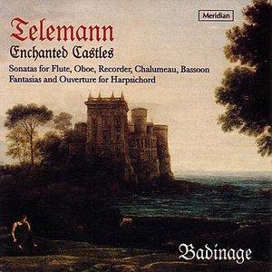Bild für 'Enchanted Castles: Sonatas For Flute,Oboe,Recorder,Chalumeau,Bassoon'