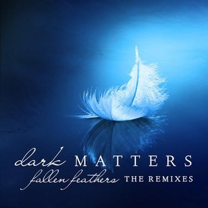 Image for 'Fallen Feathers (The Remixes)'