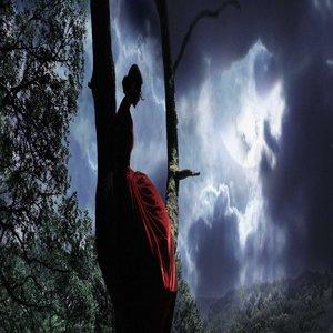 Image for 'Le passage des saisons'