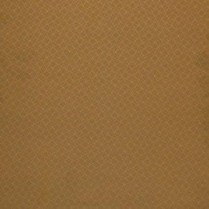 Immagine per 'Stratocaster'