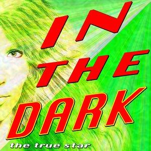 Image for 'In The Dark (Tribute Dev)'