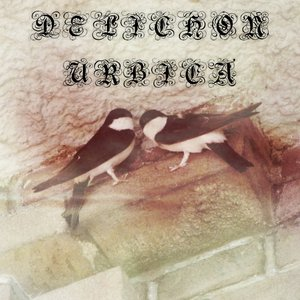 Immagine per 'Demo'