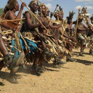 Image for 'Tonga Tribe'