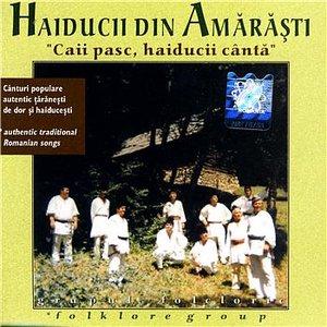 Image for 'Haiducii din Amarasti'