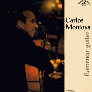 Image for 'Flamenco Guitar'