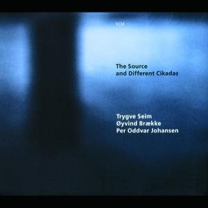 Image for 'The Source and Different Cikadas'