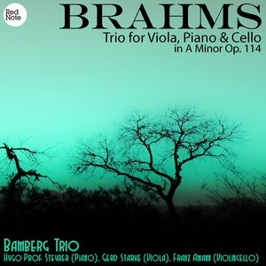 Image for 'Brahms: Trio for Viola, Piano & Cello in A Minor Op. 114'