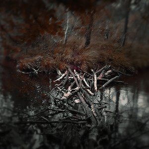 Image for 'Revalation'