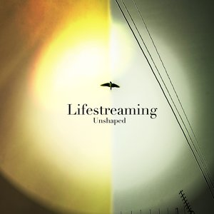 Image for 'LifeStreaming'