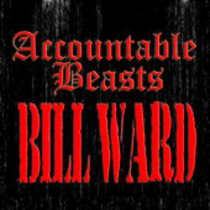 Image for 'Accountable Beasts'