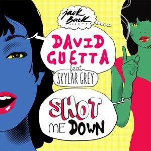 Immagine per 'Shot Me Down (feat. Skylar Grey)'