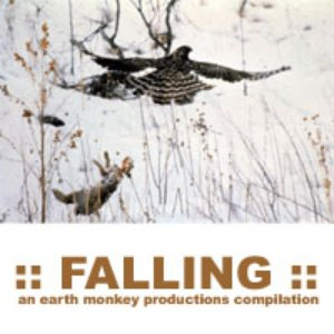 Image for 'on a theme of falling'